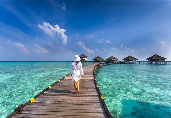 Przygoda na Sri Lance i atole Malediwów - Sri Lanka