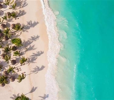 Dwa wybrzeża Zanzibaru -